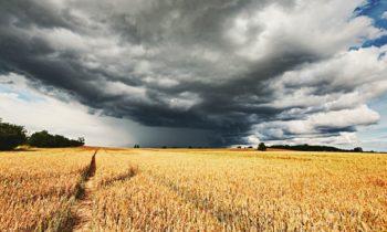 Huragan czy nie huragan?