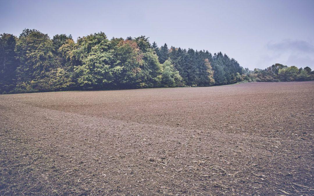 Trwa jesienny sezon ubezpieczenia upraw!
