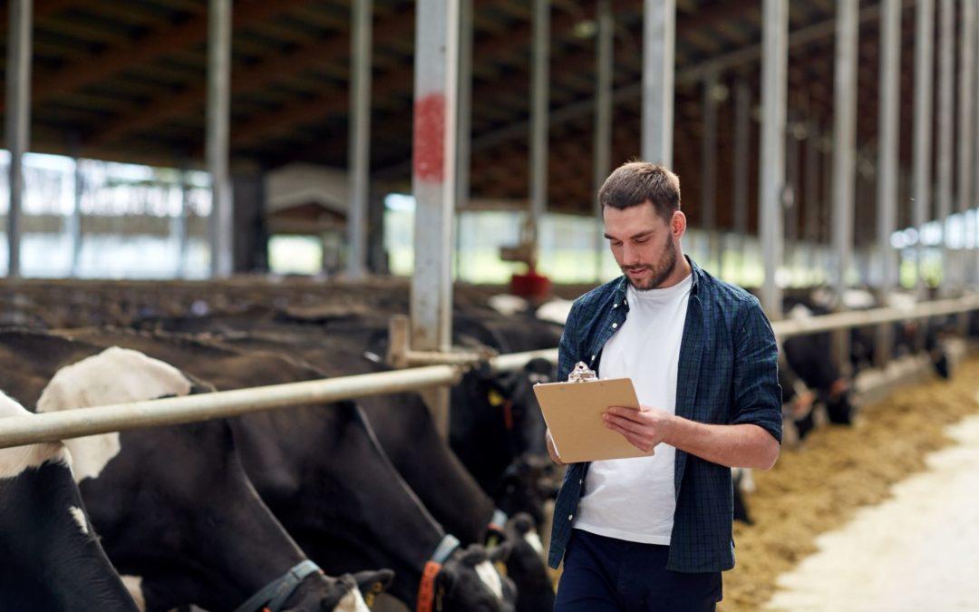 Obowiązkowe ubezpieczenie budynków wgospodarstwie rolnym – przyczyna poważnych problemów finansowych?